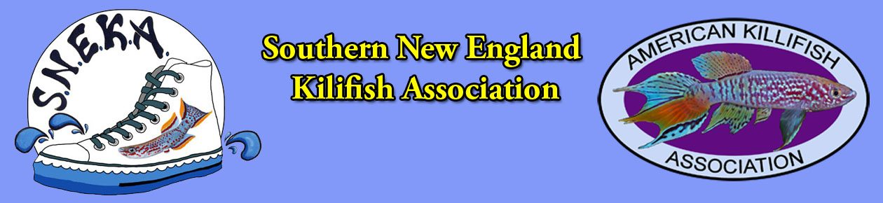 Southern New England Killifish Association